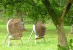 Zielscheiben auf grüner Wiese unter Bäumen